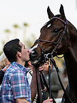 DEC 28: Omaha Beach gets a kiss from his groom after winning the Malibu Stakes at Santa Anita Park in Arcadia, California on December 28, 2019. Evers/Eclipse Sportswire/CSM