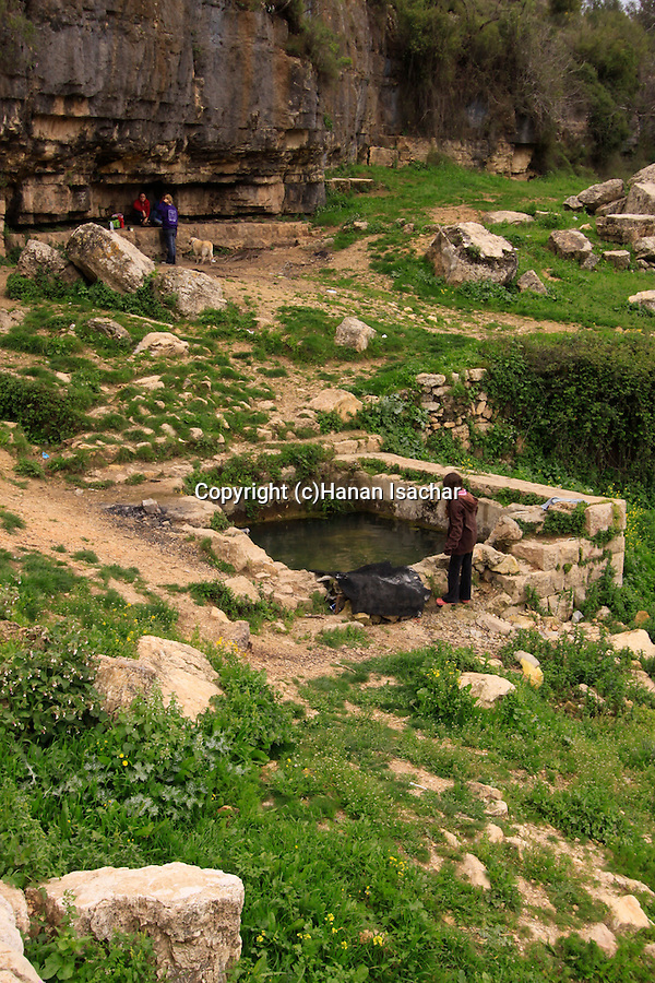 Israel, Jerusalem Mountains, Ein Limor in Nahal Ksalon