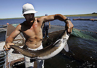 Edgardo Mesquita holds a Siberian sturgeon at his fish farm in the company of Sturgeon of the Black River, to some 285 kms, to north of Montevideo, Uruguay,Thursday,Nov.17,2005.  The Uruguayan caviar exports mostly to the United States and is put in equilibrium to come to be the toast of the gastronomes of the world. .Photo/Marcelo Hernandez