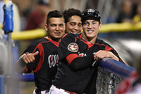Batavia Muckdogs Ryan Aper, Rodrigo Vigil and Carlos Duran (front to back) in the dugout during a game against the Williamsport Crosscutters on August 25, 2014 at Dwyer Stadium in Batavia, New York.  Batavia defeated Williamsport 3-0.  (Mike Janes/Four Seam Images)