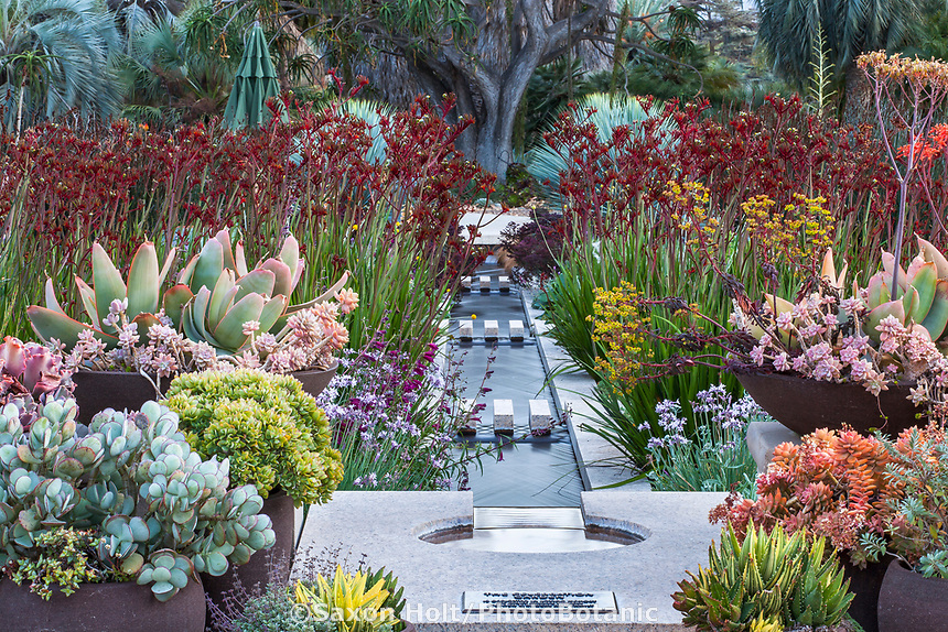 The Celebration Garden with water rill between perennial beds; Huntington Botanic Garden