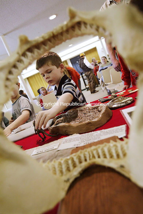 WOODBURY, CT- 16 APRIL 2005-041605JS10--Kevin Brown, 5, of Watertown is framed by a pair of shark teeth as he looks over some of the fossils on display during a show by Walt Heinz, a fossil hunter, Saturday at the Woodbury Public Library in Waterbury.   --- Jim Shannon Photo--Farmington River, Riverton are CQ