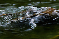 Water traveling down the Tobacco River in northwest Montana