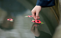 Pictured: A poppy is placed in the fountain by a young cadet. Saturday 11 November 2017<br /> Re: Armistice Day, two minutes were observed to mark remembrance at Castle Square in Swansea, Wales, UK.