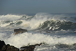 Storm surf in Pacific Grove,  Asilomar