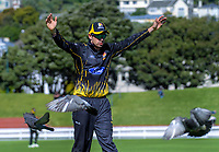 Malcolm Nofal walks through the pigeons during the Ford trophy one day cricket match between Wellington Firebirds and Northern Districts at the Basin Reserve in Wellington, New Zealand on Sunday, 4 November 2018. Photo: Dave Lintott / lintottphoto.co.nz