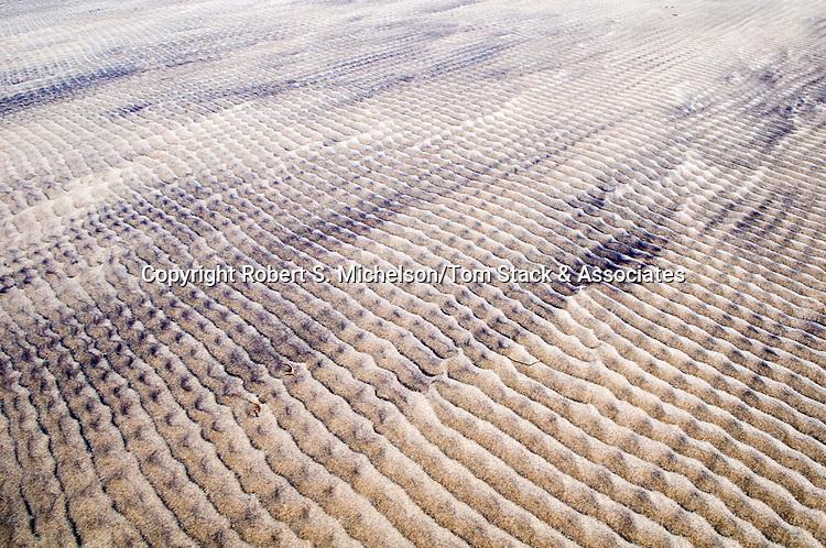 Sand ripples, South Beach, Chatham, Massachusetts