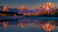 937000026 panorama view -  aspens populus tremuloides in fall color line the banks of the snake river with mount moran and the teton range in the background all reflected in the snake river at oxbow bend on a tranquil autumn morning in grand tetons national park wyoming