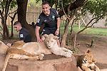 07.01.2019, Broederstroom, Johannesburg, RSA, TL Werder Bremen Johannesburg Tag 05 - Besuch Lion and Safari Park<br /> <br /> im Bild / picture shows <br /> <br /> Johannes Eggestein (Werder Bremen #24)<br /> David Lennart Philipp (Werder Bremen #31)<br /> bei den Loewen<br /> Foto © nordphoto / Kokenge