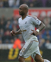 Andre Ayew of Swansea City during the Barclays Premier League match between Swansea City and Liverpool at the Liberty Stadium, Swansea on Sunday May 1st 2016