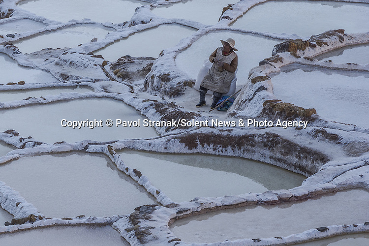 Pictured: Worker amongst the Maras salt wells<br /> <br /> An elderly Peruvian woman hikes up the windy slope of an Andean mountain, collecting salt from the wells around her.   Two large sacks of the mineral can be seen beside her, which she will walk back down the mountain to sell, just as her ancestors have done for centuries.<br /> <br /> She can be seen scaling up the 3,380 metre Qaqawiñay mountain in Peru, where the salt is in such great supply that it spills down the sides of the wells, looking almost like frost.   The area, known locally as 'Salineras de Maras', is made up of thousands of wells, all of which are around five square metres wide.   SEE OUR COPY FOR DETAILS<br /> <br /> Please byline: Pavol Stranak/Solent News<br /> <br /> © Pavol Stranak/Solent News & Photo Agency<br /> UK +44 (0) 2380 458800