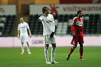 League Cup Quarter Final, Swansea V Middlesbrough, Liberty Stadium, 12/12/12<br />