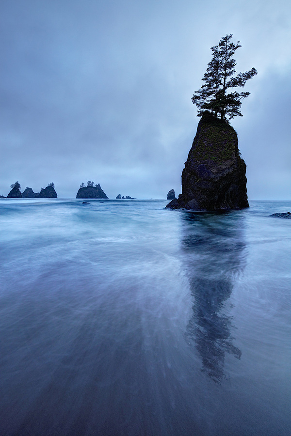Dusk sets over ocean waves and sea stacks, Shi Shi Beach, Olympic National Park, Washington Coast, USA
