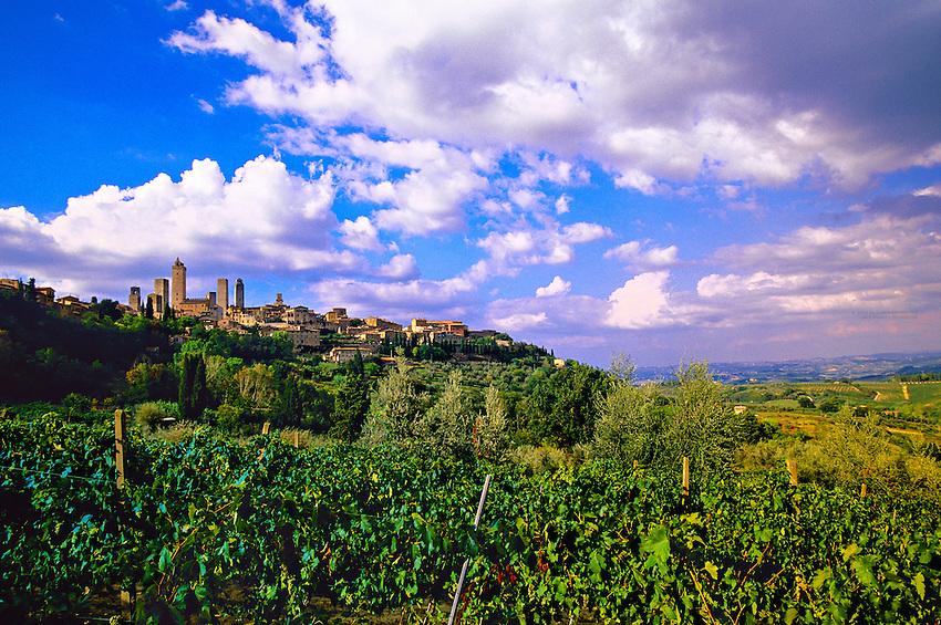 Vineyards surrounding San Gimignano, Tuscany, Italy