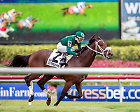HALLANDALE BEACH, FL - December 09: Tip Sheet and Emisael Jaramillo win the 4th Running of the $75,000 Smooth Air for trainer Stanley I. Gold and Arindel at Gulfstream Park on December 9, 2017 in Hallandale Beach, FL. (Photo by Bob Aaron/Eclipse Sportswire/Getty Images.)