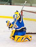 JAC Womens Hockey vs Titans Du College Limoilou