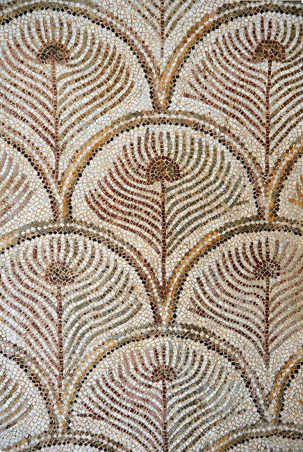 Pictures of a geometric  Roman mosaics design depicting peacock tail feathers, from the ancient Roman city of Thysdrus. 3rd century AD. El Djem Archaeological Museum, El Djem, Tunisia.