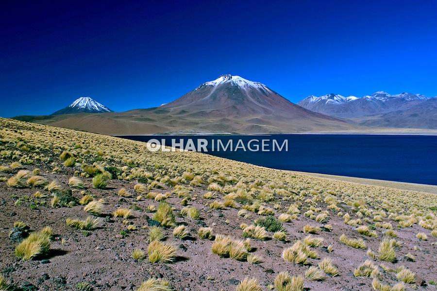 Lagoa no Deserto do Atacama. Chile. 2004. Foto de Maristela Colucci.