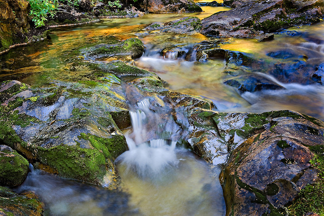 Small Cascade and Summer Reflections in Panther Creek, Mt. Rainier National Park