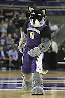 Jan 06, 2011:  Washington Huskies mascot Harry entertained the fans during a timeout against Arizona.  Washington defeated Arizona 85-68 at Alaska Airlines Arena at Hec Edmundson Pavilion Seattle, Washington.