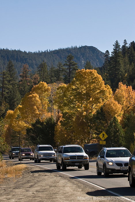 """Traffic jam of autumn """"leaf peepers"""" in Hope Valley, Eastern Sierra Nevada, fall, Toiyabe National Forest, California"""