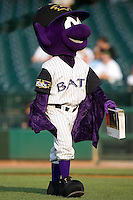 Louisville Bats mascot Buddy Bat delivers the game ball to the mound at Louisville Bats Field in Louisville, KY, Wednesday, August 8, 2007.