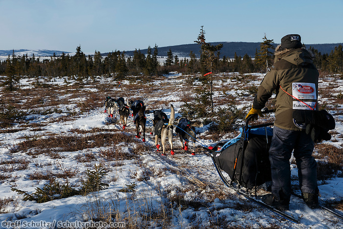 Robert Sorlie runs on the snowless tundra trail out of Koyuk on Monday, March 10, during the Iditarod Sled Dog Race 2014.<br /> <br /> PHOTO (c) BY JEFF SCHULTZ/IditarodPhotos.com -- REPRODUCTION PROHIBITED WITHOUT PERMISSION