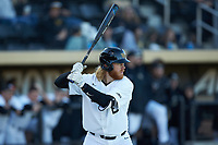 William Simoneit (8) of the Wake Forest Demon Deacons at bat against the Louisville Cardinals at David F. Couch Ballpark on March 7, 2020 in  Winston-Salem, North Carolina. The Demon Deacons defeated the Cardinals 3-2. (Brian Westerholt/Four Seam Images)