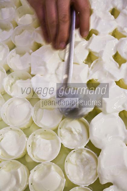 Europe/France/73/Savoie/Val d'Isère: Préparation des faisselles de fromage blanc bio à la Ferme de l'Adroit