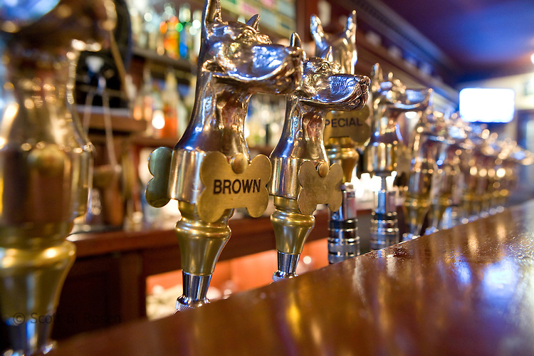 Hand-crafted beers get the gold treatment at Great Dane Pub & Brewing Company.
