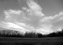 Wenatchee Mountains clouds and trees over a meadow near Blewett Pass in black and white. Stock photography by Olympic Photo Group