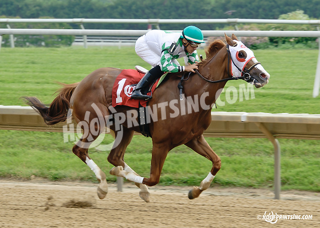 Breaking Up winning at Delaware Park racetrack on 6/9/14
