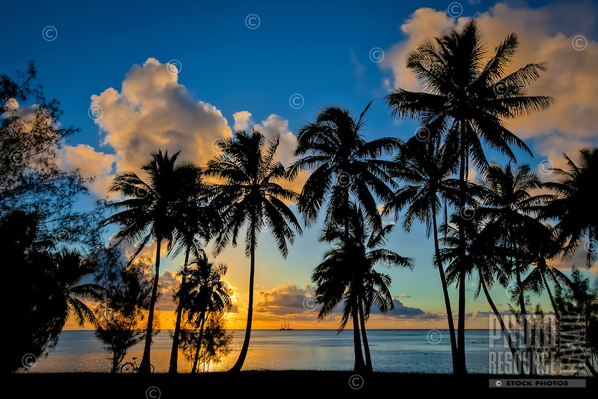 Sunset at Amuri Beach, with a silhouette of palm trees framing a Dawn Treader in the distance, Amuri Beach, Aitutaki Island, Cook Islands.