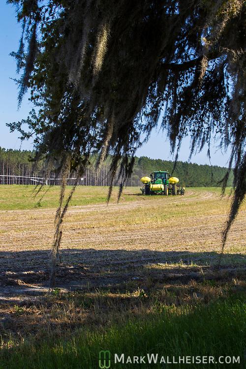Randy Dowdy plants corn near Valdosta, Ga. April 1, 2014.