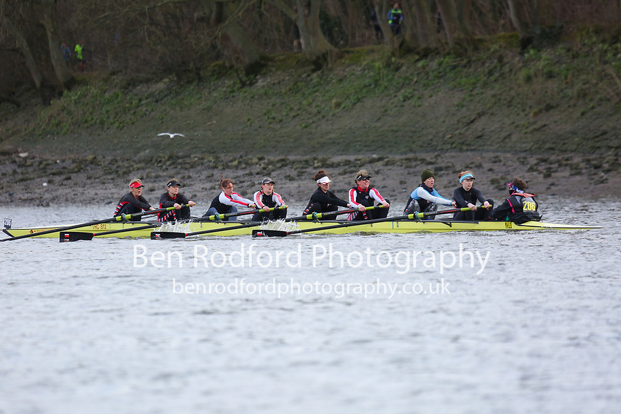 Crew: 206   Thames   WMasB-E (WMasB)<br /> <br /> Quintin Head 2019<br /> <br /> To purchase this photo, or to see pricing information for Prints and Downloads, click the blue 'Add to Cart' button at the top-right of the page.