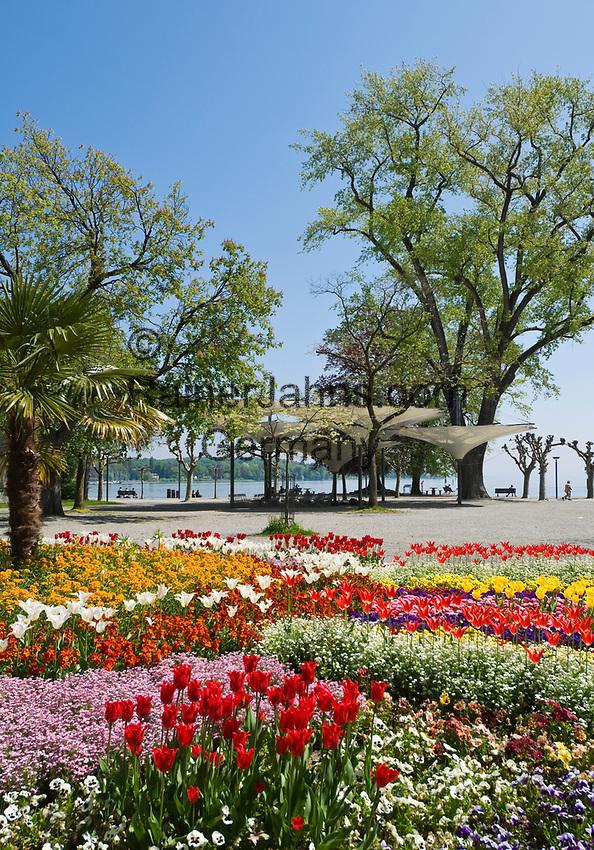 DEU, Deutschland, Baden-Wuerttemberg, Bodensee, Konstanz: Park, Seepromenade neben dem Konzilgebaeude am Hafen | DEU, Germany, Baden-Wuerttemberg, Lake Constance, Constance: Park, seaside promenade