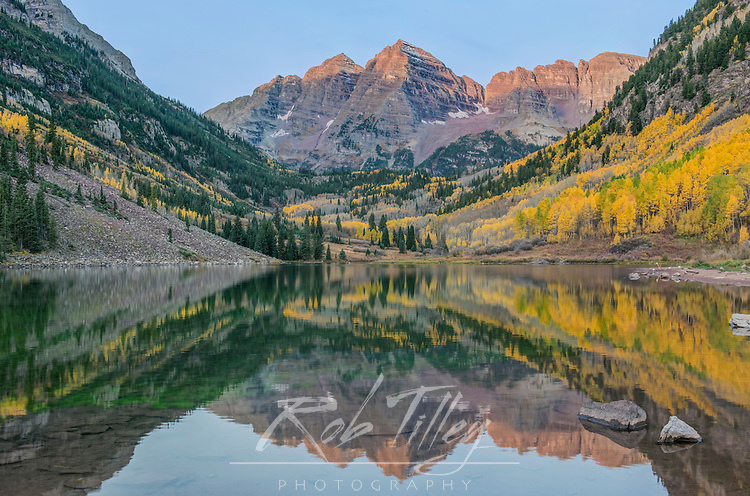 US, CO, White River NF, Maroon Bells with  Autumn Color at First Light