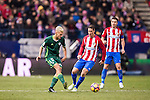 Daniel Ceballos Fernandez 'Dani Ceballos' (l) of Real Betis Balompie competes for the ball with Fernando Torres of Atletico de Madrid during their La Liga 2016-17 match between Atletico de Madrid vs Real Betis Balompie at the Vicente Calderon Stadium on 14 January 2017 in Madrid, Spain. Photo by Diego Gonzalez Souto / Power Sport Images