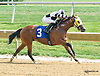 Alerta winning at Delaware Park on 9/19/15