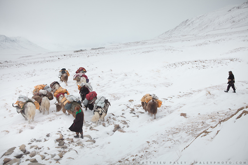 A Kyrgyz caravan on its way to the lower valley, between the camps of Ech Keli and Burgut Yor...Trekking with yak caravan through the Little Pamir where the Afghan Kyrgyz community live all year, on the borders of China, Tajikistan and Pakistan.