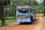 Colourful Lanka Ashok Leyland bus, Polonnaruwa, North Central Province, Sri Lanka, Asia people waving