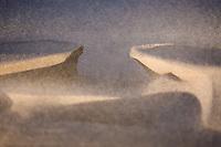 Sandstorm at the Great Sand Dunes National Park.<br /> <br /> Canon EOS 5D, 70-200 f/2.8L lens