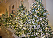 "The 2017 White House Christmas decorations, with the theme ""Time-Honored Traditions,"" which were personally selected by first lady Melania Trump, are previewed for the press in Washington, DC on Monday, November 27, 2017.  These are Christmas trees in the Cross Hall.<br /> Credit: Ron Sachs / CNP"