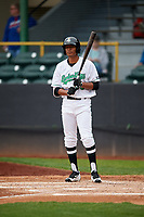 Clinton LumberKings designated hitter Dimas Ojeda (33) at bat during a game against the Lansing Lugnuts on May 9, 2017 at Ashford University Field in Clinton, Iowa.  Lansing defeated Clinton 11-6.  (Mike Janes/Four Seam Images)