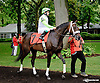 Cosmic Emergency before The Tax Free Shopping Distaff on Owners Day at Delaware Park on 9/13/14