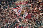 21.09.2010, Rhein-Neckar-Arena, Sinsheim, GER, 1. FBL, TSG Hoffenheim vs FC Bayern Muenchen, im Bild die mitgereisten Fans der Bayern hatten was zu feiern, Foto © nph / Roth