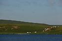 16/06/14 - CEZALIER - PUY DE DOME - FRANCE - Lac de la Godivelle d en haut - Photo Jerome CHABANNE