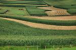 Farmland in Lanesboro Harmony Minnesota area.