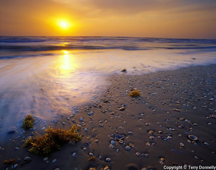 Padre Island National Seashore, TX<br /> Sunrise on the Texas gulf coast