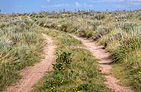 Access road thru the Cimarron Naional Grassland in western Kansas.